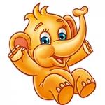 slon ovko